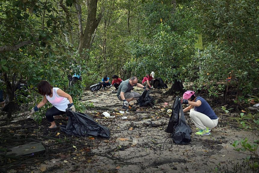 """Programme manager Adrian Lim and his daughter Elizabeth were among the 67 volunteers cleaning up the Lim Chu Kang mangrove yesterday (below). """"People should know that there's all this nature right in our backyard, but there's also all this trash,"""" sa"""