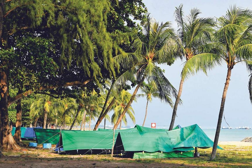THEN: Tents where many without a roof over their heads would pass the night on the beach at East Coast Park. Some have since sought shelter at park pavilions nearby.