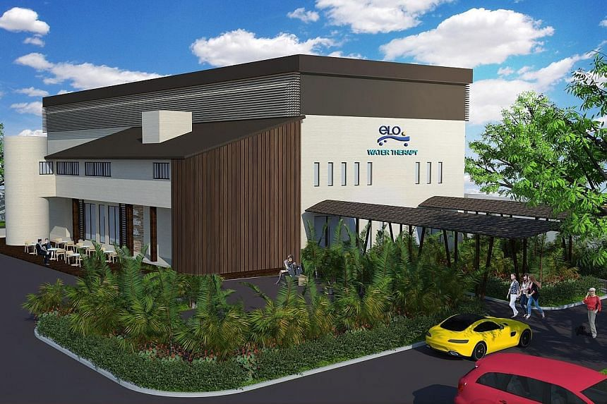 An artist's impression of Hyflux's flagship Elo Lab, which is expected to open in the third quarter of this year. The EDB has partnered with the water-treatment company in rolling out a number of investments, including a $30 million integrated and au