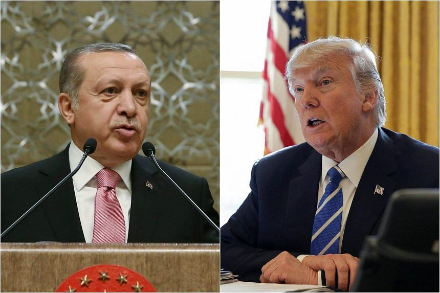 Turkish President Recep Tayyip Erdogan and US President Donald Trump have agreed to act jointly against the Islamic State in Iraq and Syria (ISIS) in the Syrian towns of al-Bab and Raqqa.