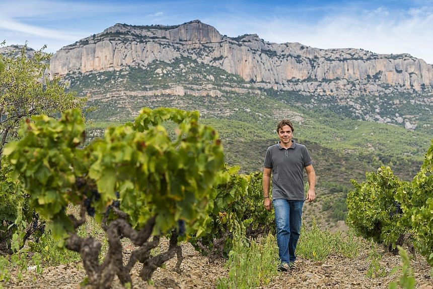 Mr Ricard Rofes, head wine-maker at Spanish winery Scala Dei, looks after 41 different vineyards spread across 70ha of land in the Priorat wine-making region of Spain.