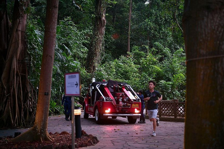 A Singapore Civil Defence Force vehicle at the Botanic Gardens yesterday, a day after the incident that claimed the life of Ms Angara and injured four others. Ms Angara, who was the regional digital marketing head for the Asia-Pacific at MasterCard,