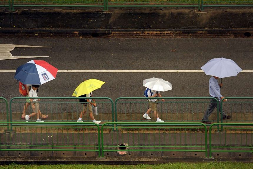 NEA has said that warm days and short showers can be expected for the rest of February.