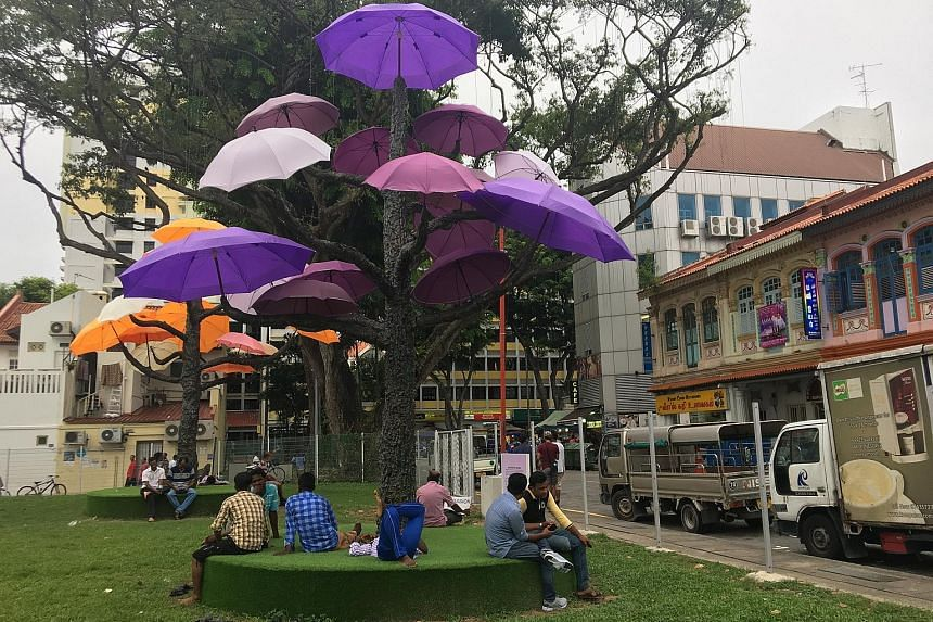 The canopy of umbrellas hanging from trees along Hindoo Road in Little India is a winning entry from a previous My Ideas for Public Spaces contest. It has transformed an overlooked stretch of land into a popular selfie spot.