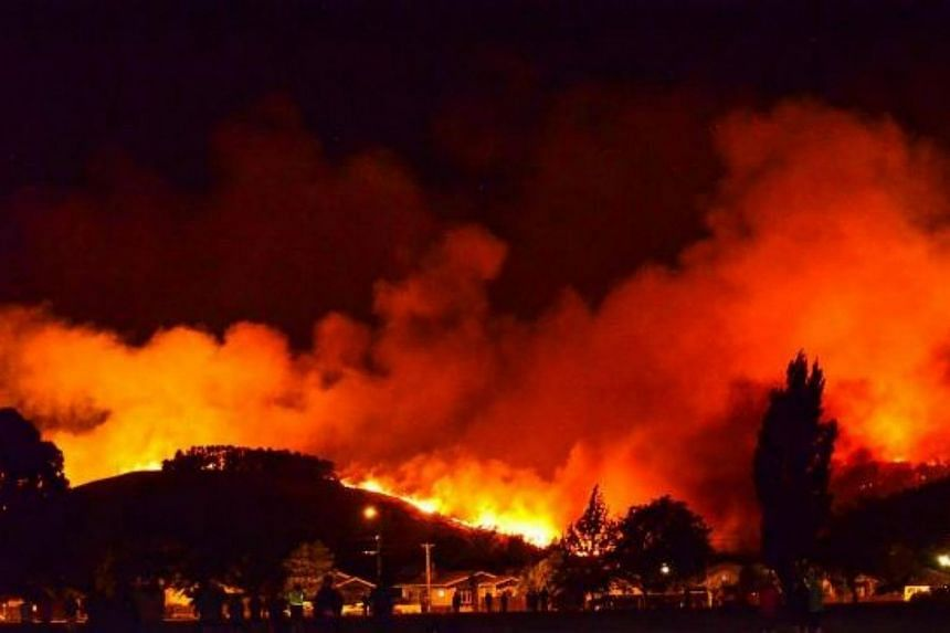 A wildfire destroyed at least 11 homes and forced hundreds of terrified residents to evacuate in the New Zealand city of Christchurch, authorities said Thursday (Feb 16).