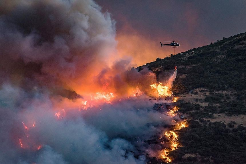 A helicopter dumping fire retardant on wildfires near Christchurch on Monday. The wildfire in the Port Hills district has spread rapidly to cover more than 1,800ha, emergency workers said. More than 1,000 people were evacuated from their homes, 11 pr