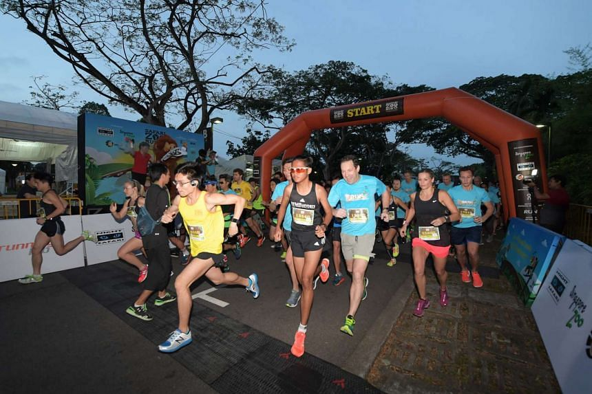 Team Ah Meng came out on top, with nearly 30 per cent of runners choosing to race for the iconic zoo personality, raising $40,000 for Sumatran orangutan projects.