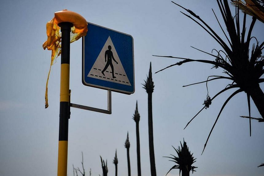 A melted street lamp and burnt trees are seen along Tuas South Avenue 7.
