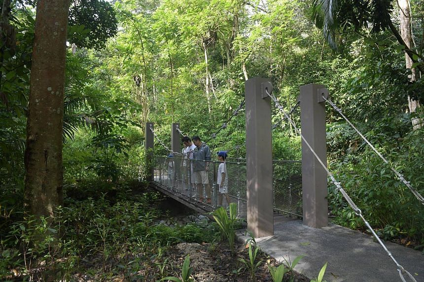 NParks officers and volunteers walk along the northern portion of the newly-opened Chestnut Nature Park, the largest nature park in Singapore.