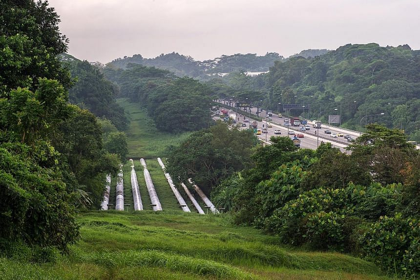 Water pipelines running alongside the Bukit Timah Expressway. While most SMEs will actually suffer only minimal pain when the price of water goes up by 30 per cent over two years, the loud protests over it reflect the heavy cost burdens that firms al
