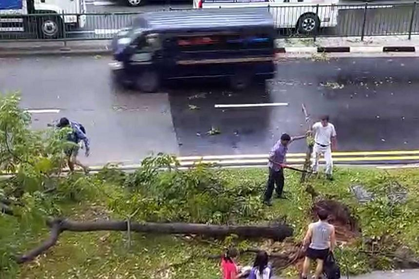 Kaki Bukit Avenue 1 after the tree was cleared on March 6, 2017.
