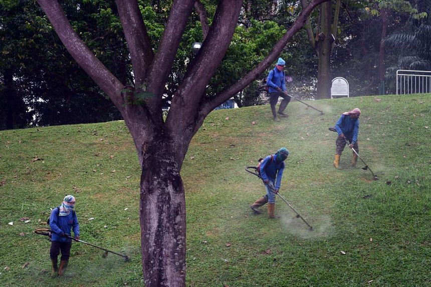 Foreign workers cutting grass in Bishan. A sensor that measures the height of grass in real-time will in future allow NParks officers to monitor their contractors' work remotely and reduce the need for physical inspections.