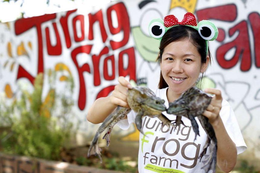 Chelsea Wan, director of Jurong Frog Farm, with an American bullfrog.
