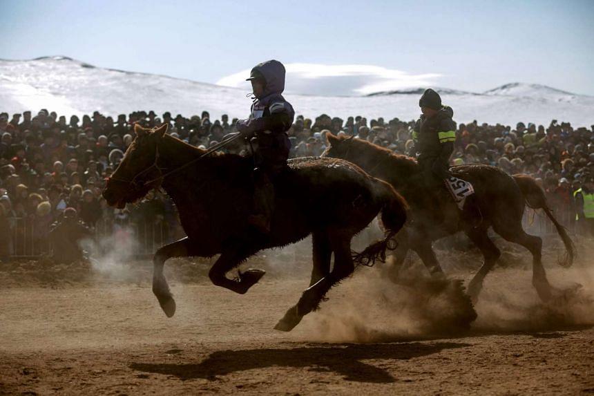 "Mongolian child jockeys competing in the ""Dunjingarav 2017"" spring horse race on the outskirts of Ulan Bator."