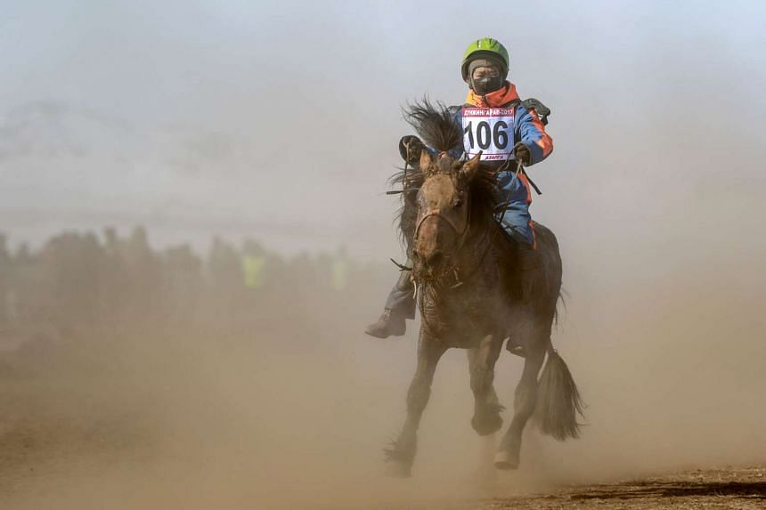 "A Mongolian child jockey competing in the ""Dunjingarav 2017"" spring horse race on the outskirts of Ulan Bator."