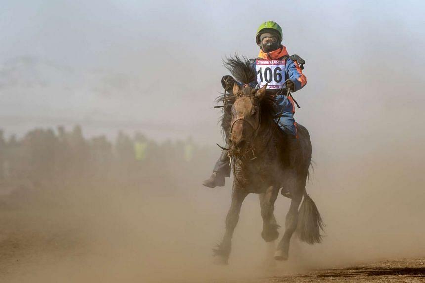 "A Mongolian child jockey competing in the ""Dunjingarav 2017"" spring horse race on the outskirts of Ulan Bator."
