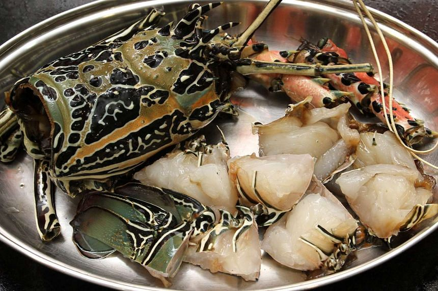 Are you behaving monstrously if you boil a live lobster – a fairly common cooking method? Could you be found guilty of animal cruelty if so?