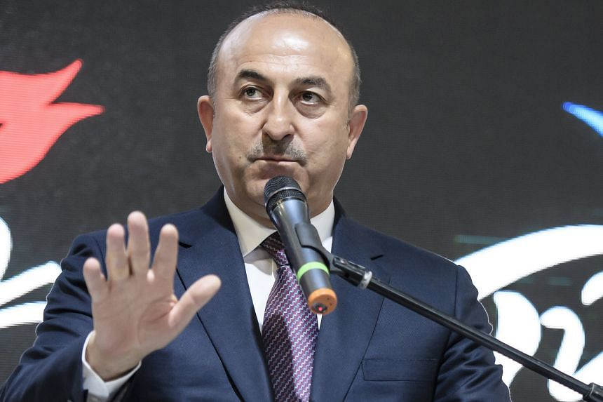 Mr Cavusoglu said the Dutch treated Turkish citizens in the country like ''hostages''.