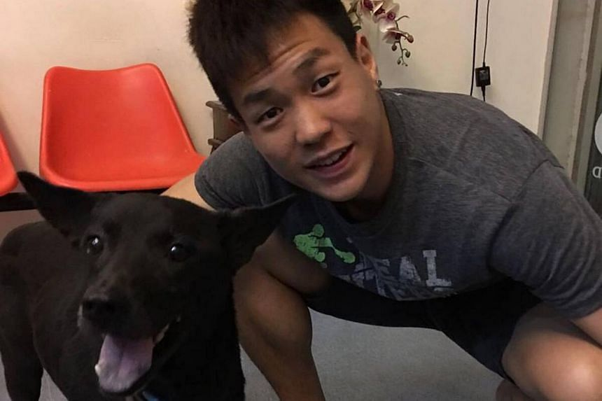 Kickboxer Terrence Teo with the black dog he found limping on the road.