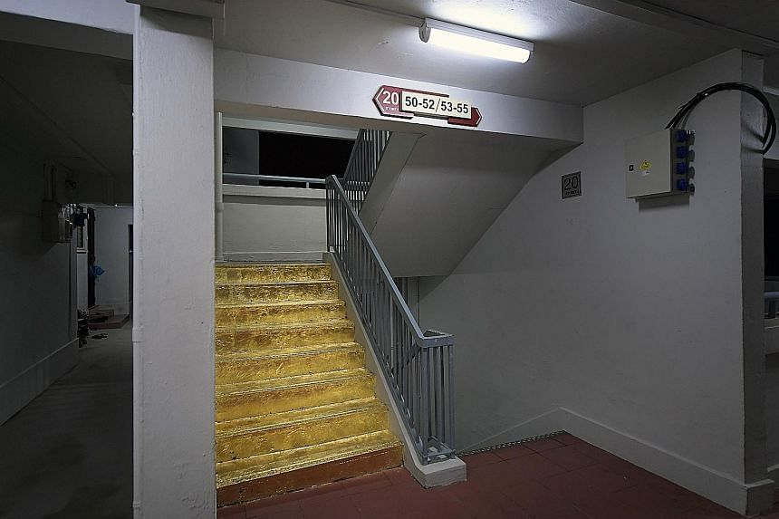 """Lasalle student Priyageetha Dia, 25, has removed her """"golden staircase"""" creation that led to a debate about art in public spaces. On Facebook yesterday morning, she said: """"The existence and the end of this work bears my responsibility and no one else"""