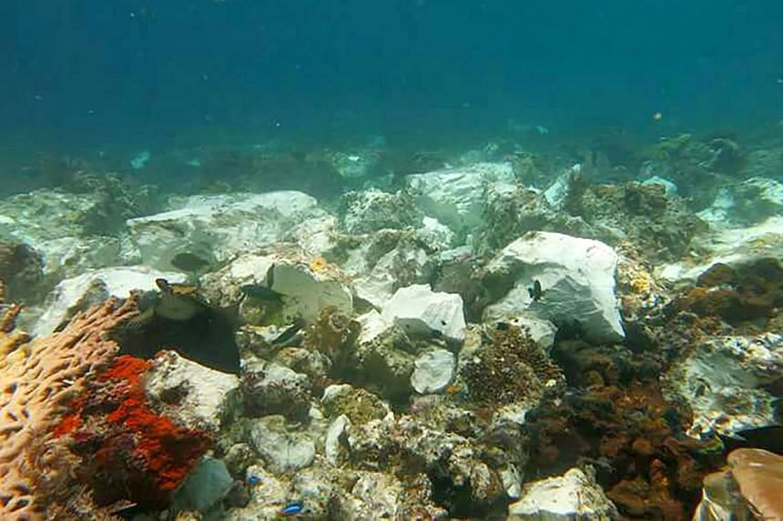 Part of the coral reef in Raja Ampat, Indonesia, that was damaged by a British-owned cruise ship crashing into it on March 4, 2017.