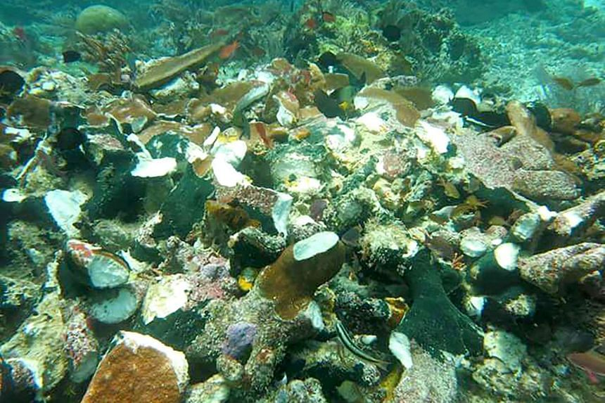 This handout from the Indonesia Marine Security Agency taken on March 13, 2017 and released on March 14 shows corals damaged by a cruise ship in Raja Ampat in eastern Indonesia.
