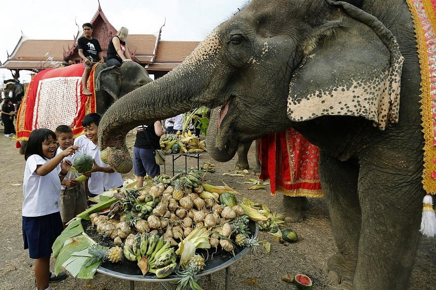 Children feeding elephants during a fruit buffet for the animals to mark National Elephant Day yesterday in Ayutthaya province in Thailand. The annual event is held on March 13 to honour the animals and also increase public awareness of the need to s