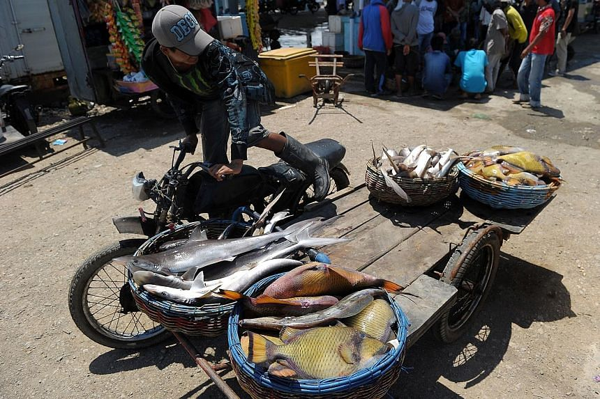 An Acehnese man transporting fish at Lampulo port in Banda Aceh. Two vessels were detained by the Indonesian navy on Sunday for alleged illegal fishing in Indonesian waters off Aceh province.