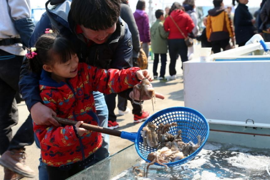 Admire camellia blooms and try catching baby octopus at the Seocheon Camellia Octopus Festival.