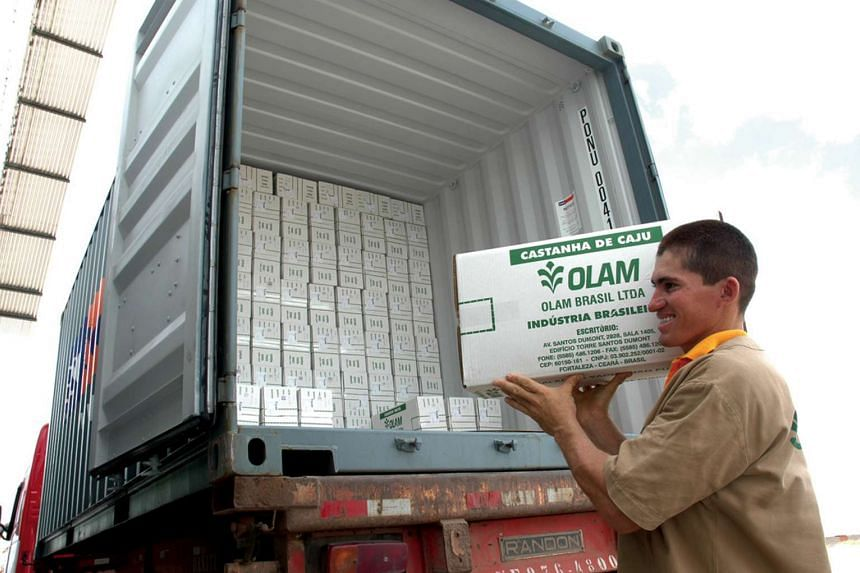 An undated handout photograph shows an Olam International Ltd employee loading a truck with boxes of cashew nuts for export in Brazil.