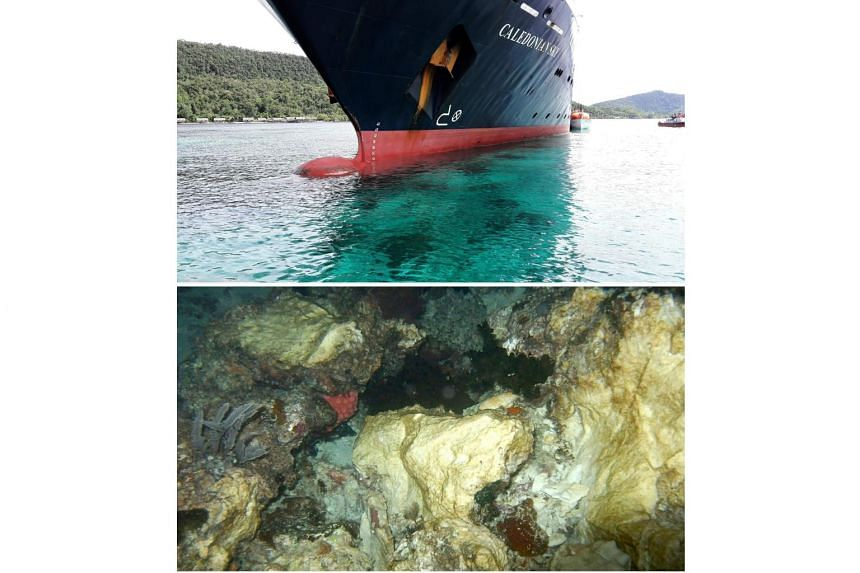 File photos taken on March 4, 2017 shows the Caledonian Sky (top), which smashed into pristine coral reefs causing extensive damage (bottom) in Raja Ampat, Indonesia.