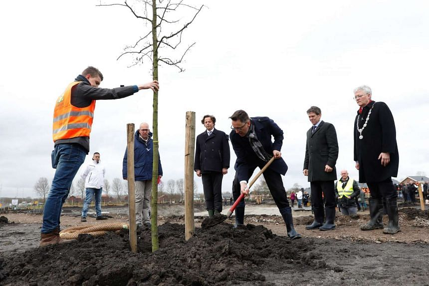 Trees are planted in remembrance of  MH17, which was blown out of the sky in 2014, over war-torn eastern Ukraine.
