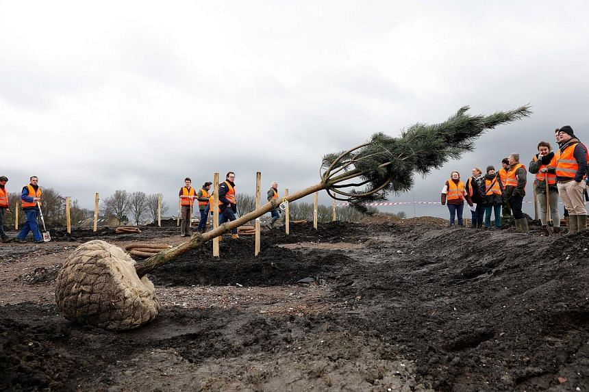 Volunteers and relatives of those killed in the MH17 disaster in 2014 planting trees in Vijfhuizen, The Netherlands, yesterday. The park, set up in memory of the victims, mostly Dutch citizens, will have 298 trees, one for each person on board. Dutch