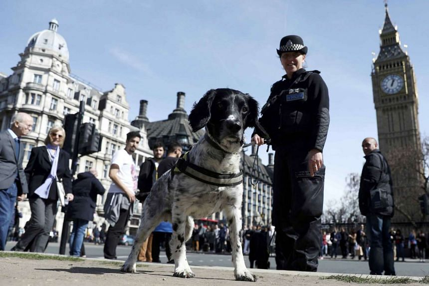 A police dog handler patrols in Parliament Square following the attack in Westminster, March 26, 2017.