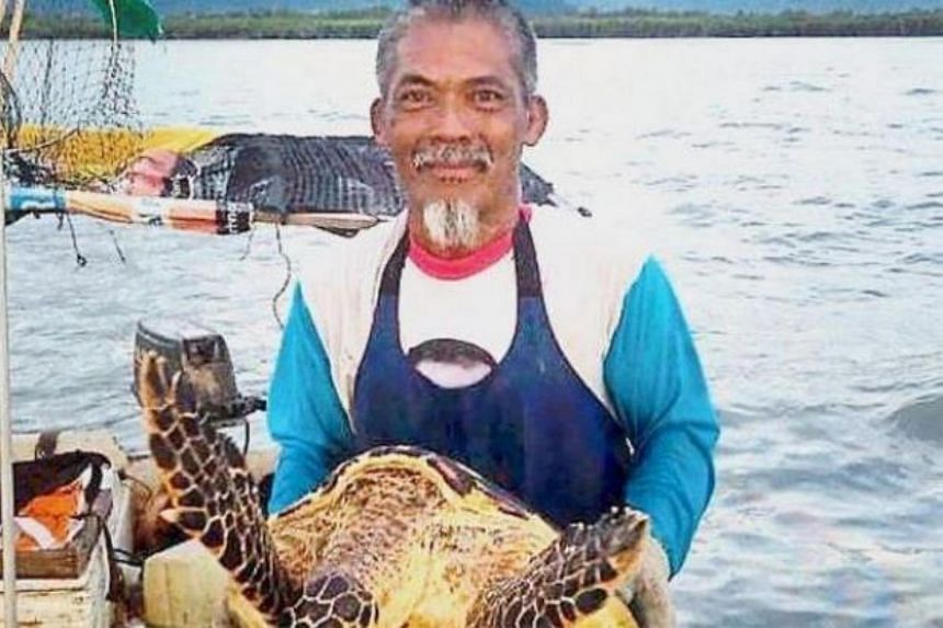 Mr Abd Malik holding the critically endangered turtle which got trapped in his fishing net off Balik Pulau, Penang.