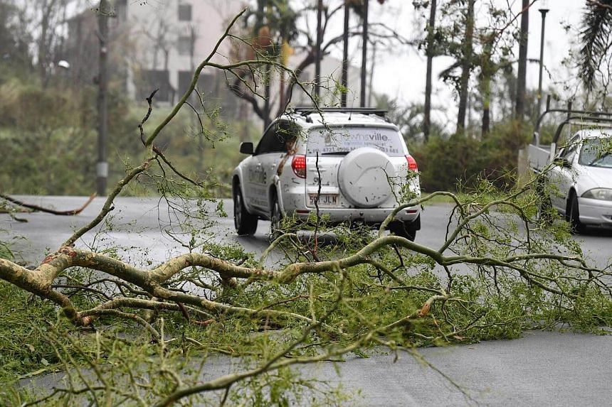 A tree is fallen across a road at Airlie Beach, Queensland, Australia, on March 28, 2017.