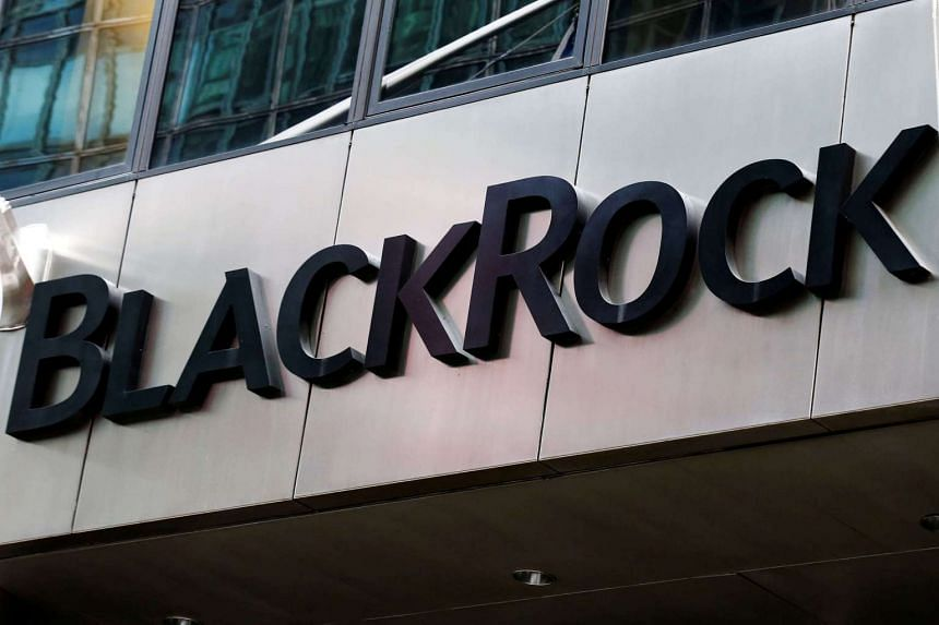 BlackRock Inc, the world's biggest money manager, has faced active stock fund withdrawals and the revamp is its biggest attempt yet to engineer a turnaround.