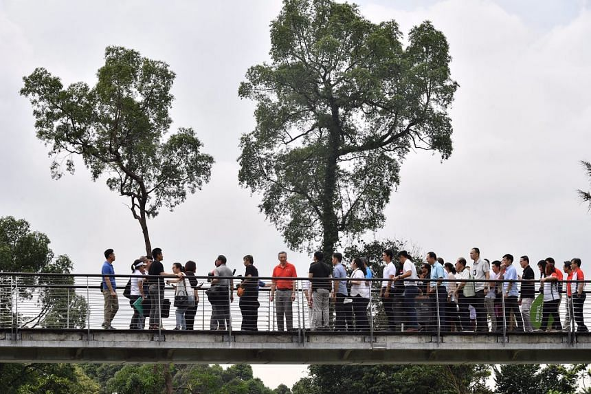 Prime Minister Lee Hsien Loong on the elevated walkway at the Keppel Discovery Wetlands in the Learning Forest of Singapore Botanic Gardens on March 31, 2017.
