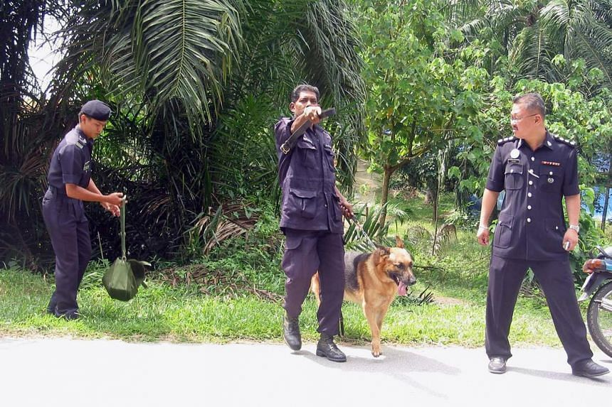 In 2015, Ms Rita David and her Malaysian husband Letchumanan Shorubu were abducted by a gang of six men from their home in Malaysia, brutalised and driven to an oil palm plantation where Ms David's body was dumped.