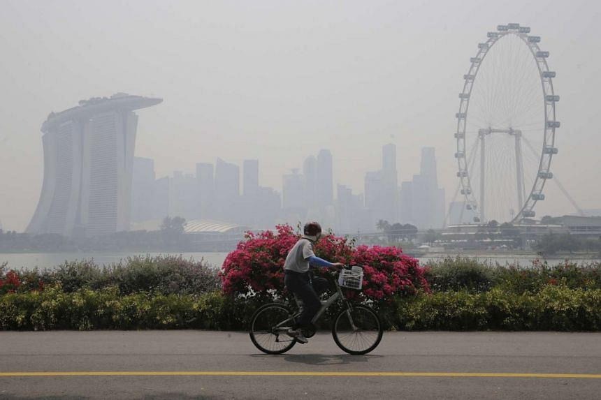 A cyclist rides along Gardens by the Bay East with the Singapore skyline shrouded in haze, on Oct 13, 2015.