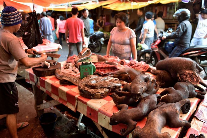 A vendor offering various animals, including pythons and crested black macaques, to his customers in Tomohon market in northern Sulawesi, on Feb 18, 2017.