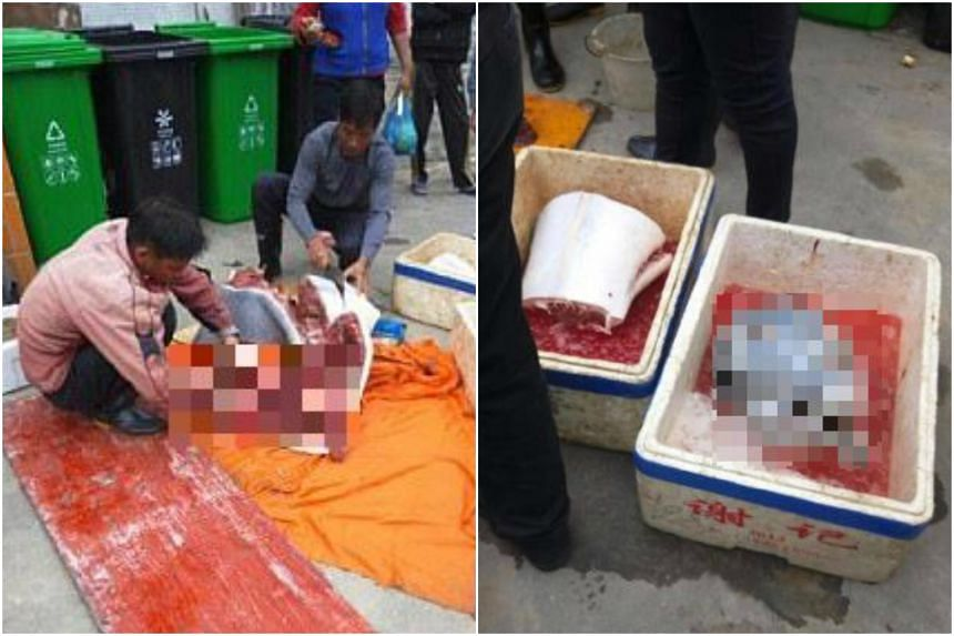 Photos on social media showed a gray-coloured dolphin cut into pieces, with its head and body parts preserved in ice-filled boxes.