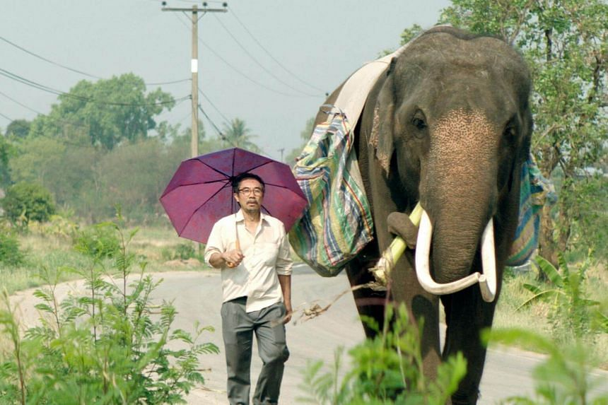 Pop Aye is about a middle-aged man who embarks on a whimsical cross-country journey with an elephant he rescues.