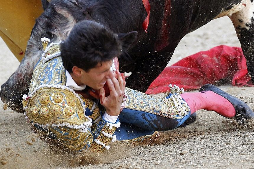 Media reports say the young bullfighter suffered severed injuries in the incident.