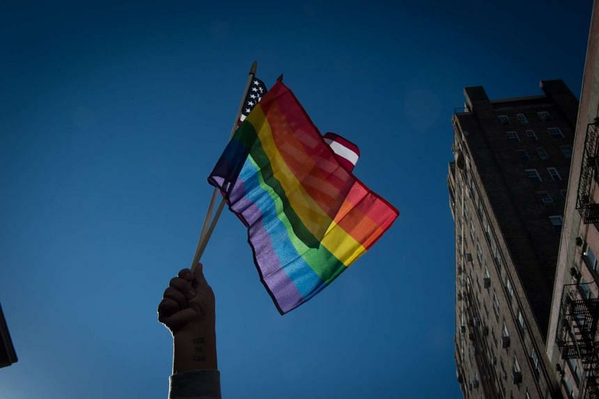 A US appeals court ruled that federal civil rights law protects lesbian, gay, bisexual and transgender employees from discrimination in the workplace.