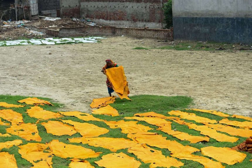 A Bangladeshi worker dries pieces of processed leather at a tannery in Dhaka.