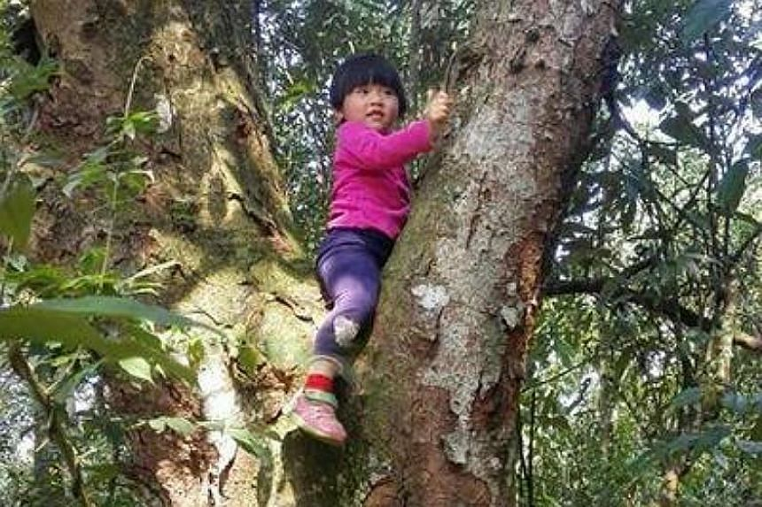 Wenwen has been on adventures across China with her parents, Pan Tufeng and Yuan Duan, soon after she learnt to walk.