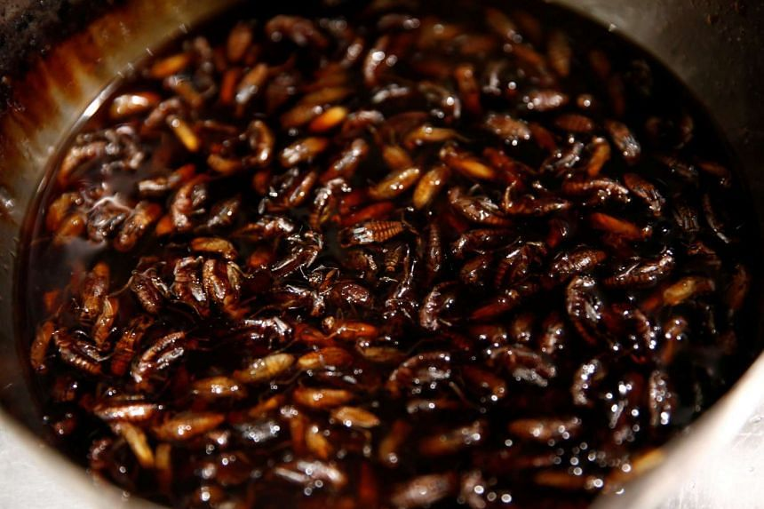 Crickets in a pot are seen after being cooked as a soup for 'insect tsukemen' at 'Ramen Nagi' restaurant in Tokyo, Japan on April 9, 2017.
