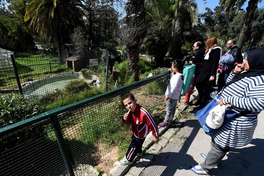 Visitors look on at crocodiles in a pen taking a sun bath at the Park Belvedere in the capital Tunis on March 2, 2017.