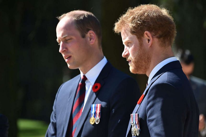 """Britain's Prince Harry (right) said he sought help from mental health professionals after encouragement from others, including """"huge support"""" from his older brother Prince William."""